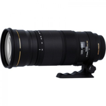 Sigma 120-300mm f/2.8 EX DG OS APO HSM AF Sports Lens (For Nikon)