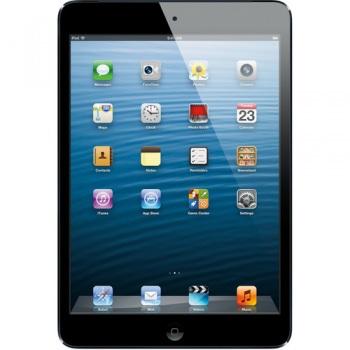 Apple 32GB iPad mini with Wi-Fi and 4G LTE (Black & Slate)